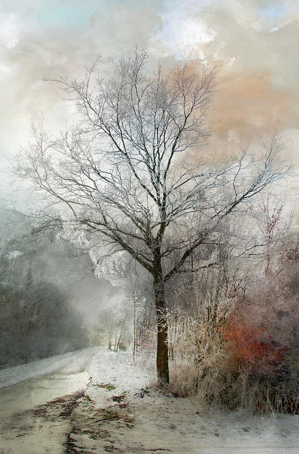 Winter Magic by Annie Snel