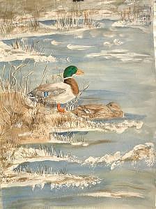 Mallards Painting - Winter Mallard by Diane Ziemski