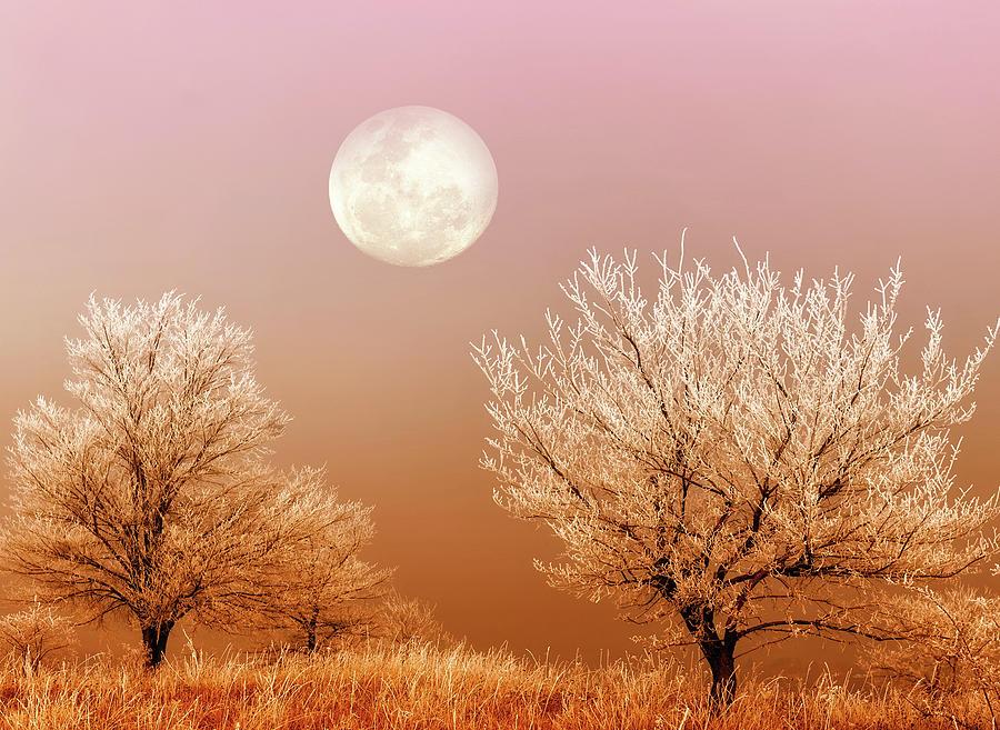 Winter Moon by KaFra Art