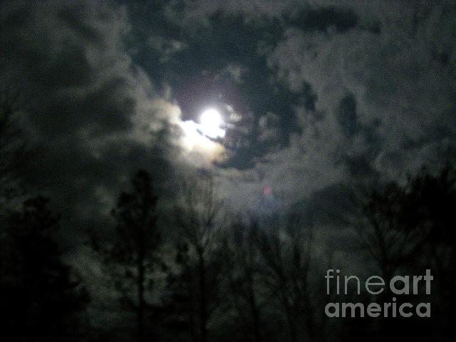 Winter Photograph - Winter Moon Love by Herbert Rioja