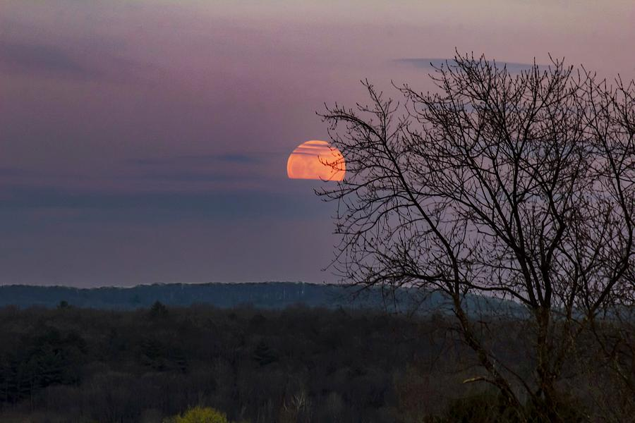 Winter moonrise by Sven Kielhorn