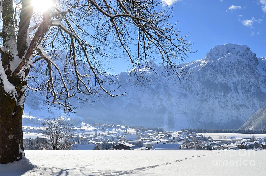 Winter Morning 2 Photograph