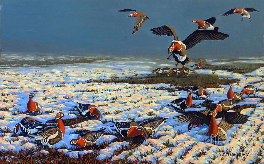 Red Breasted Snow Goose Painting - Winter Morning In Primorska Dobrudja by Valentin Katrandzhiev