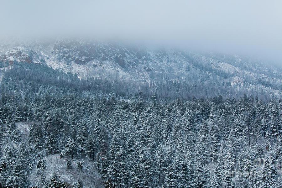 Winter On Cheyenne Mountain Photograph