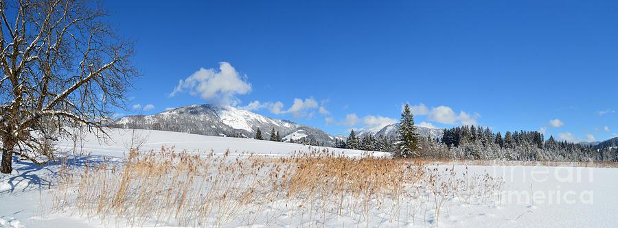 Winter Panorama Photograph