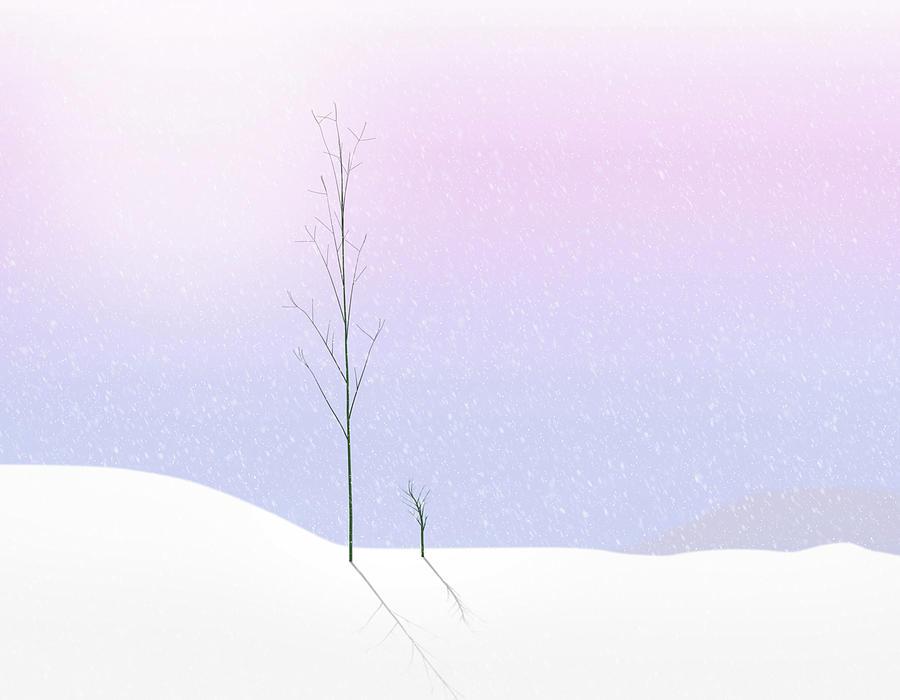 Winter Pastel by Paul Bartell
