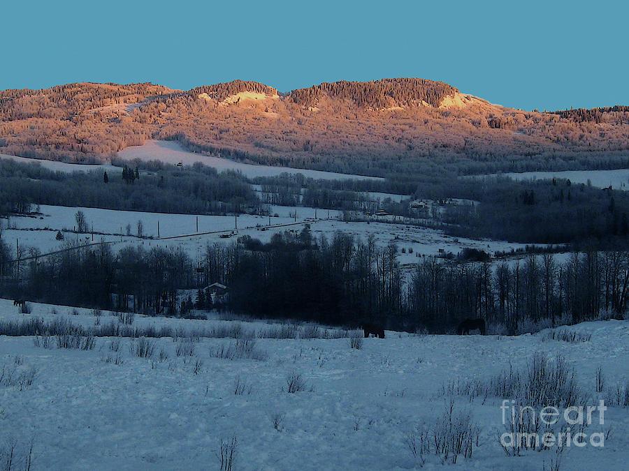 Winter pastoral by Anne Havard