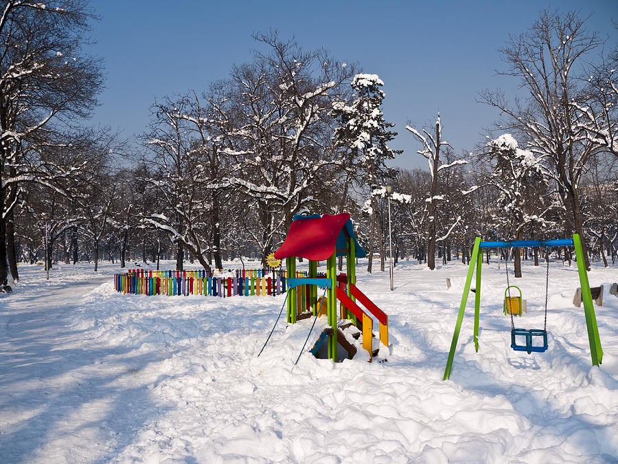 Sofia Photograph - Winter Playground by Rae Tucker