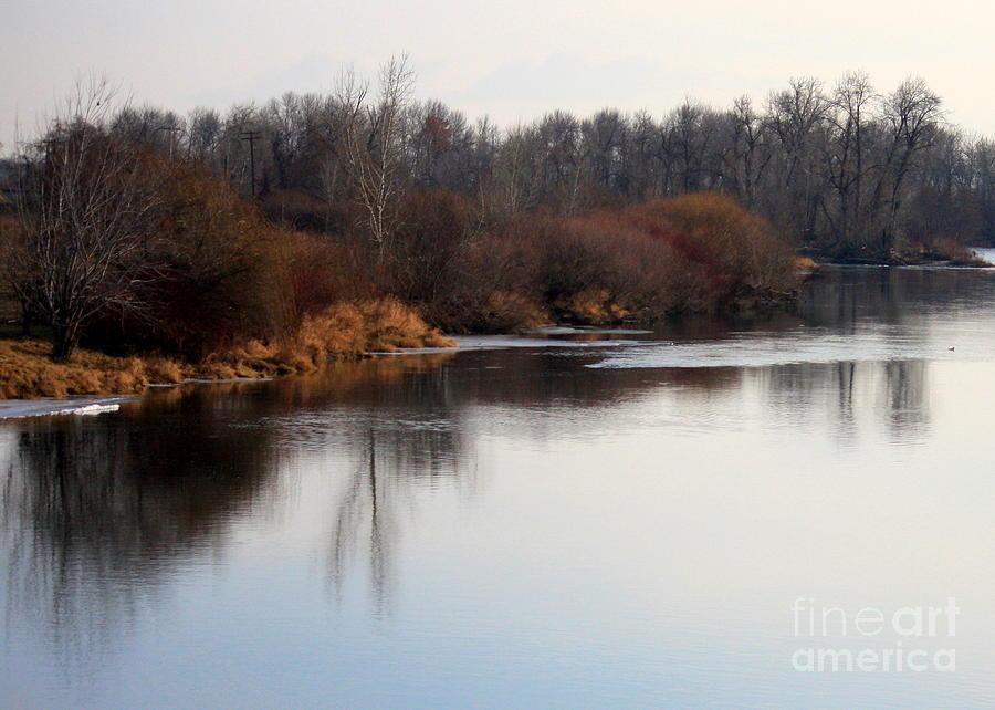 Yakima Photograph - Winter Riverbank by Carol Groenen