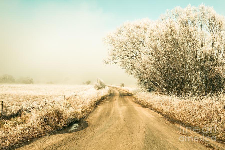 Winter Photograph - Winter Road Wonderland by Jorgo Photography - Wall Art Gallery