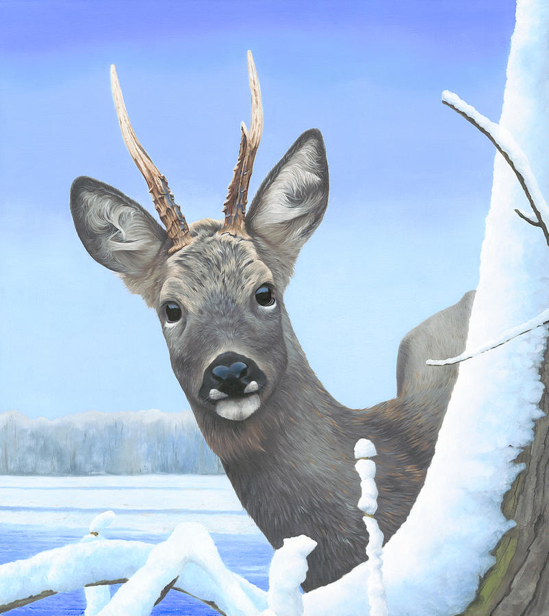 Roebuck Painting - Winter Roebuck by Clive Meredith