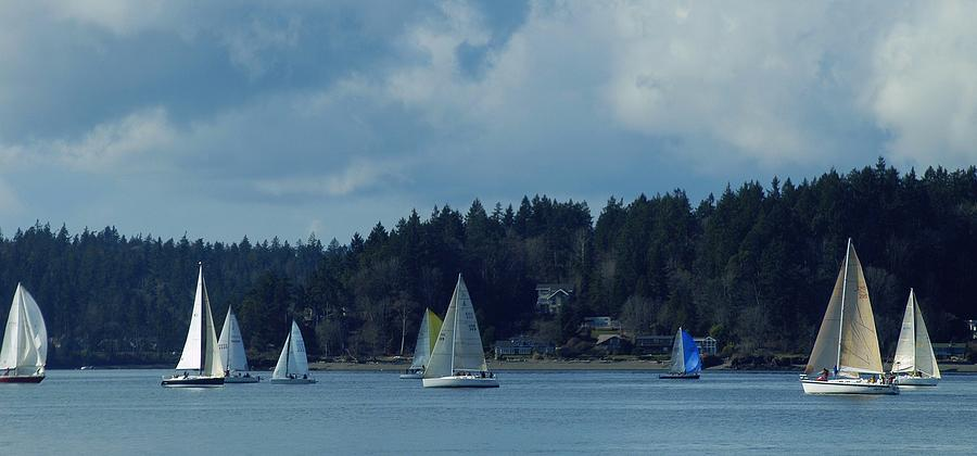 Sail Photograph - Winter Sailing In Puget Sound by Lori Seaman
