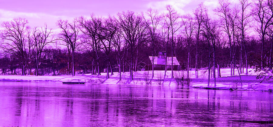 Violet Photograph - Winter Scene In Violet by By Way of Karma