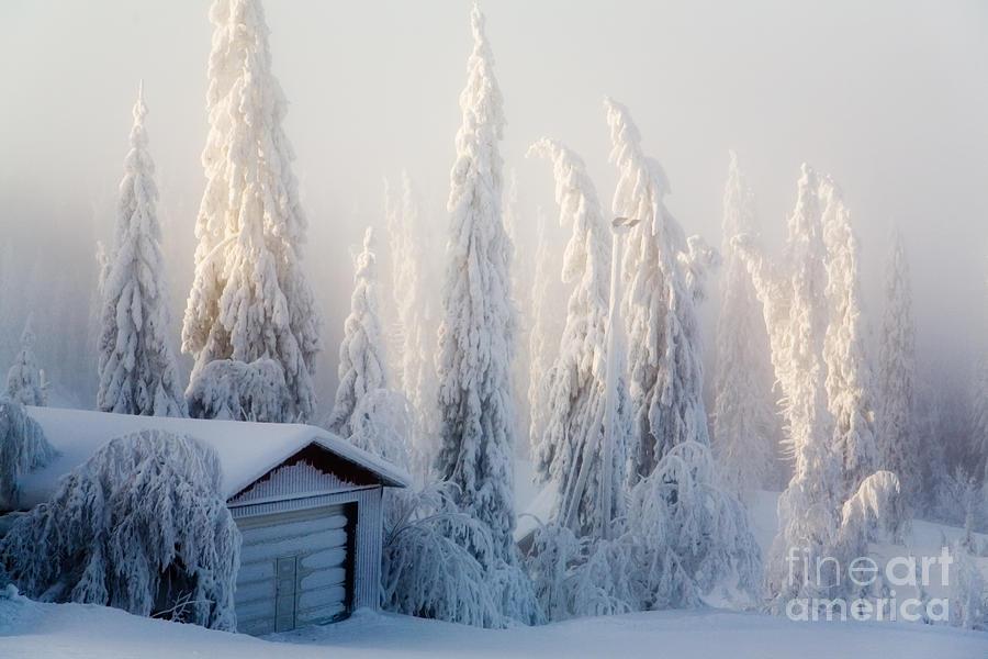 Beautiful Photograph - Winter Scene by Kati Molin