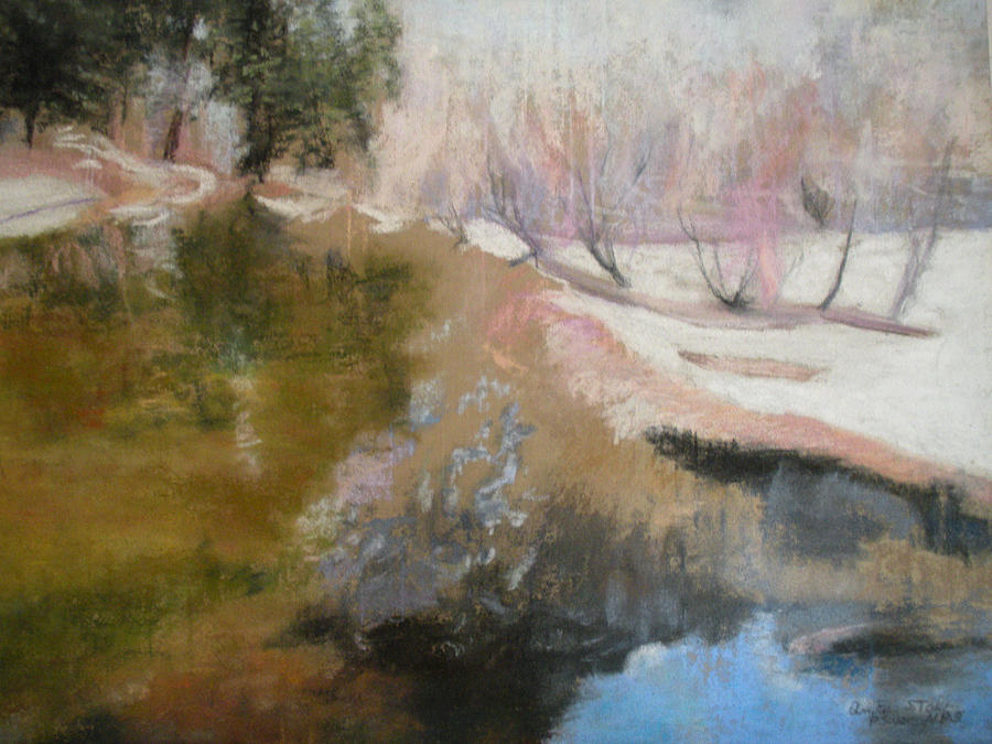 Pastel Pastel - Winter Showoff by Anita Stoll