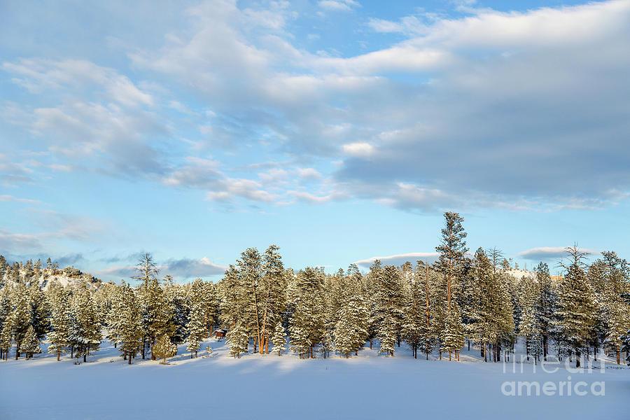 Travel Photograph - Winter Silence by Julia Hiebaum