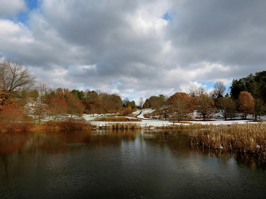 Winter Photograph - Winter Sky by Azthet Photography