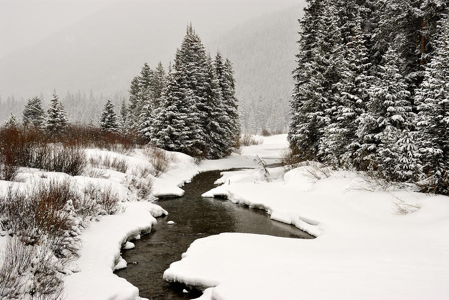 Mountains Photograph - Winter Stream by Frank Remar