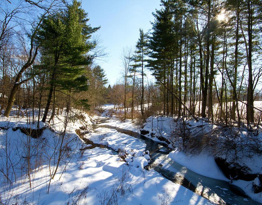 Bath Nature Preserve Photograph - Winter Stream  by Tim Fitzwater