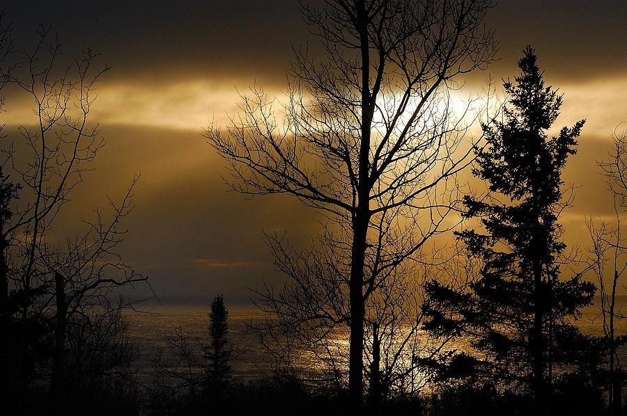 Nature Photograph - Winter Sunrise 1 by Sebastian Musial