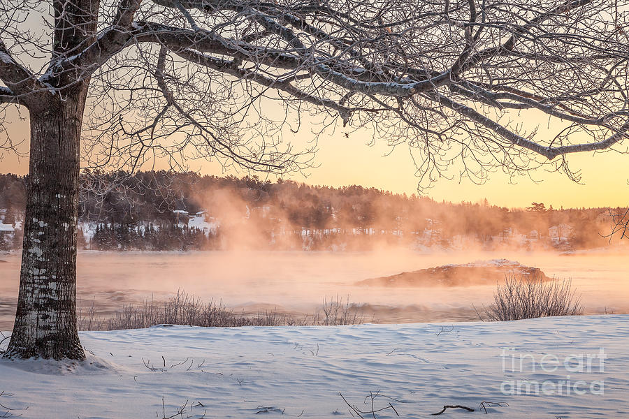 Winter sunrise, Taunton River by Susan Cole Kelly