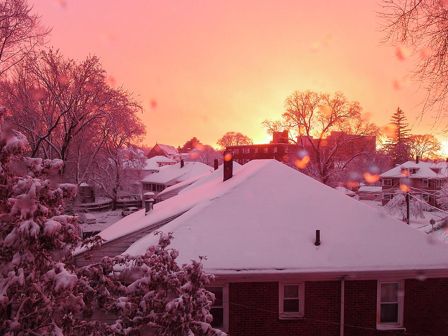 Winter Sunset by Christopher Brown