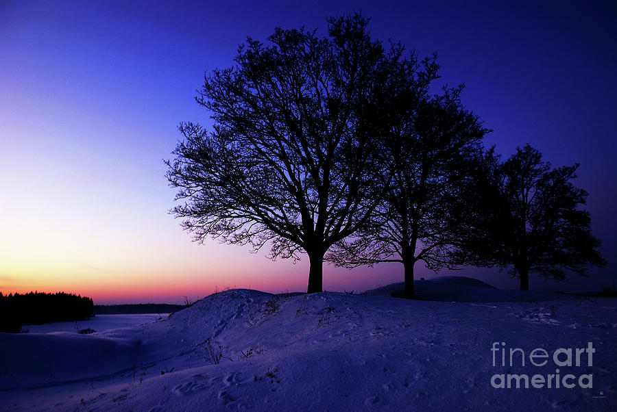 Winter Photograph - Winter Sunset by Hannes Cmarits