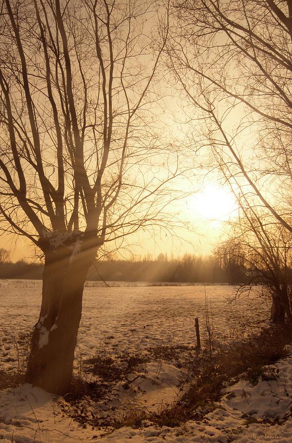 Sunset Photograph - Winter Sunset by Wim Lanclus