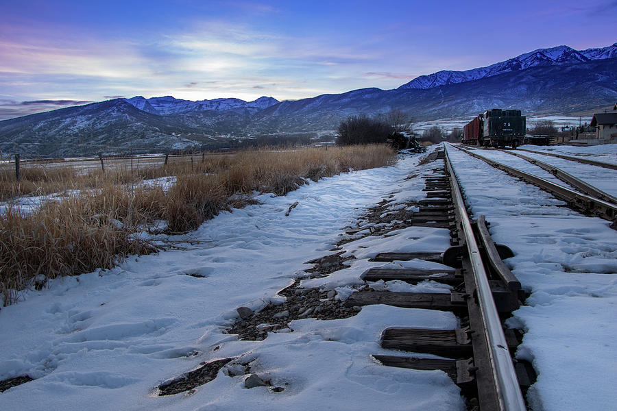 Winter Tracks by Boyce Fitzgerald