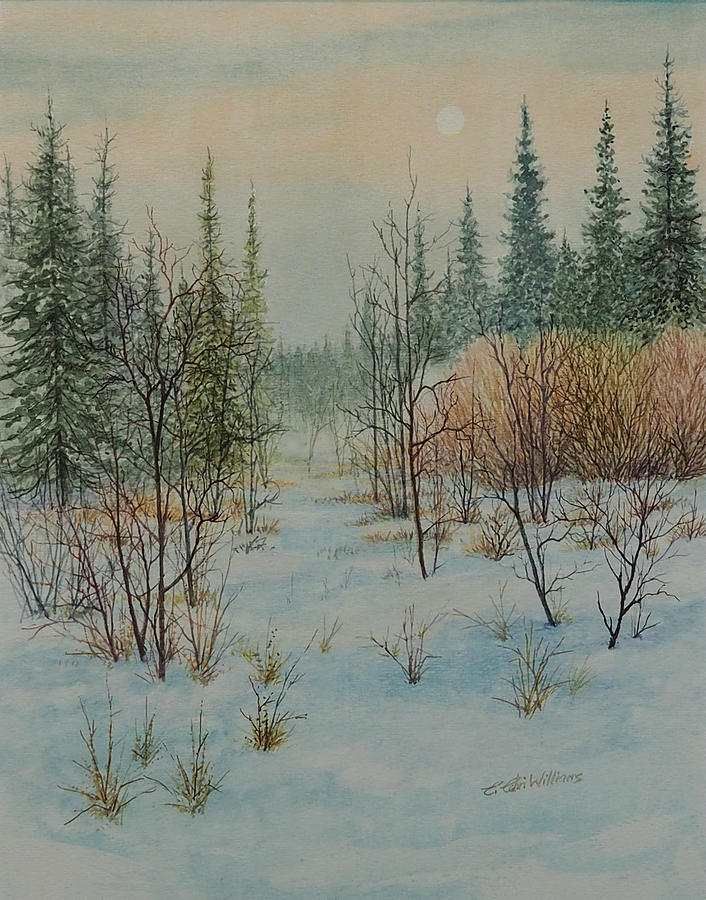Winter Trail Alberta by E Colin Williams ARCA