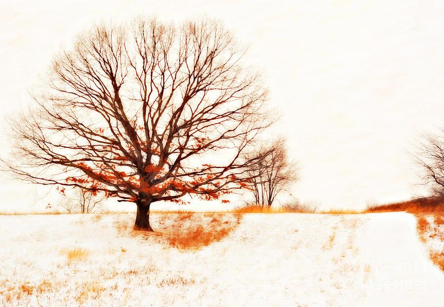 Winter Digital Art - Winter Tree by Randy Steele
