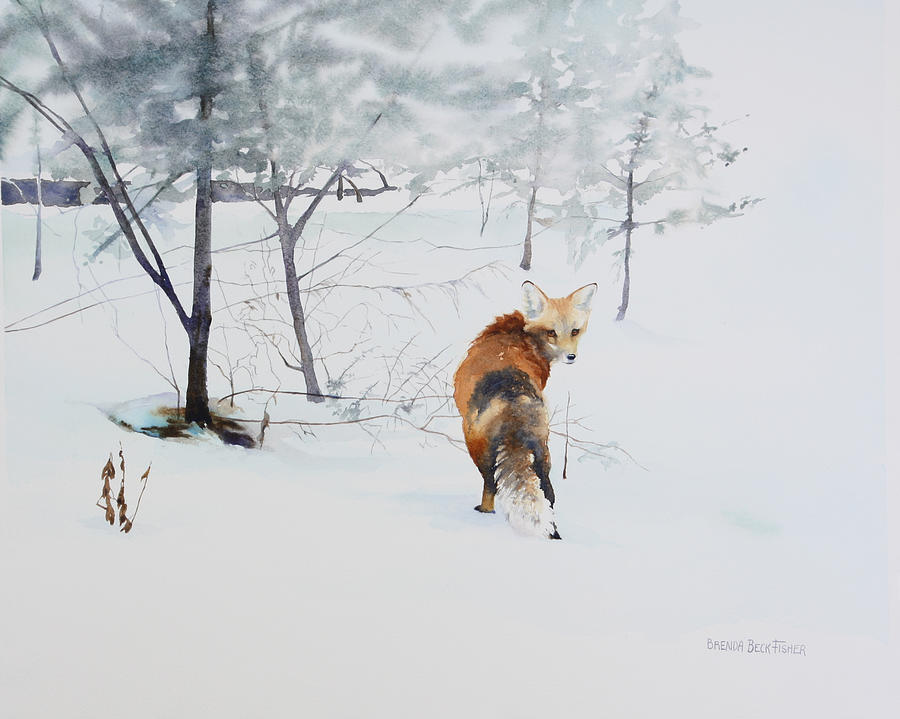 Fox Painting - Winter Visitor by Brenda Beck Fisher