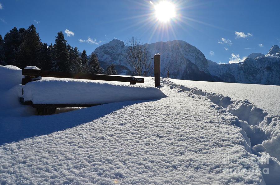 Winter Walk Photograph