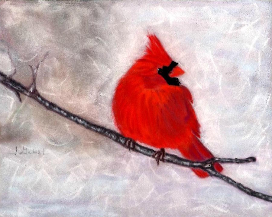 Animal Pastel - Winter Watch by Laura Gabel