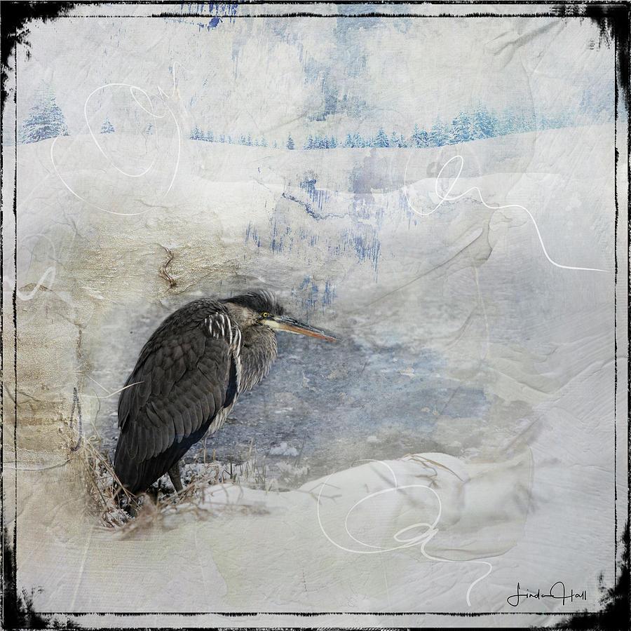 Great Blue Heron Digital Art - Winter Wind by Linda Lee Hall