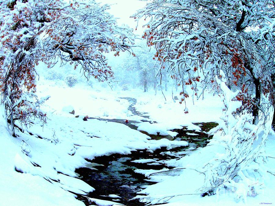 Winter Wonder by Jerome Stumphauzer