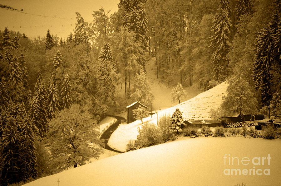 Winter Wonderland In Switzerland - Up The Hills Photograph