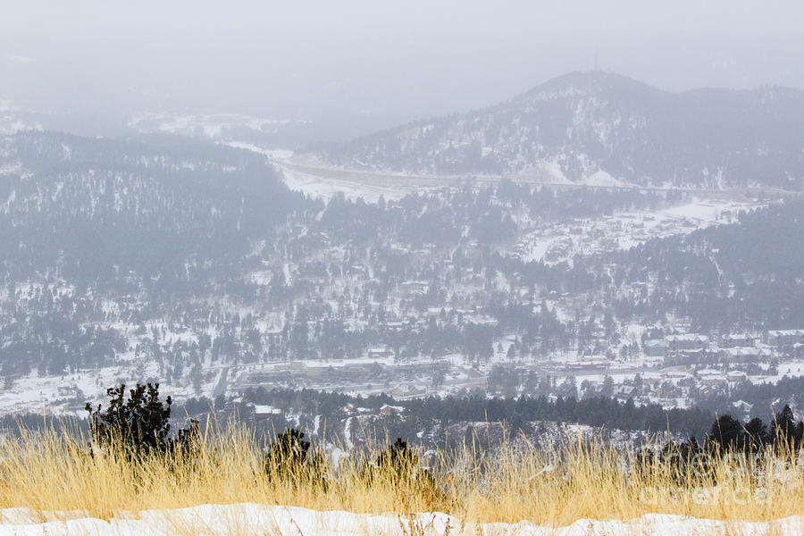 Winter Wonderland In Woodland Park Photograph