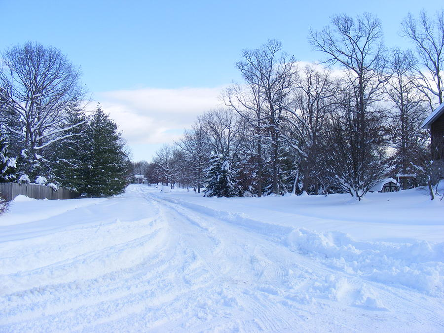 Snowstorm Photograph - Winter Wonderland by James and Vickie Rankin