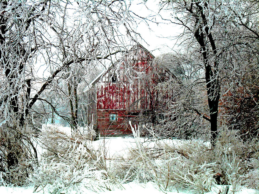 Christmas Photograph - Winter Wonderland by Julie Hamilton