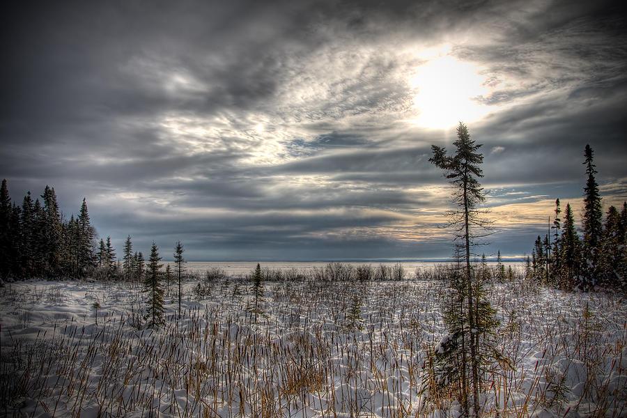 Winter Photograph - Winter Wonderland by Michel Filion