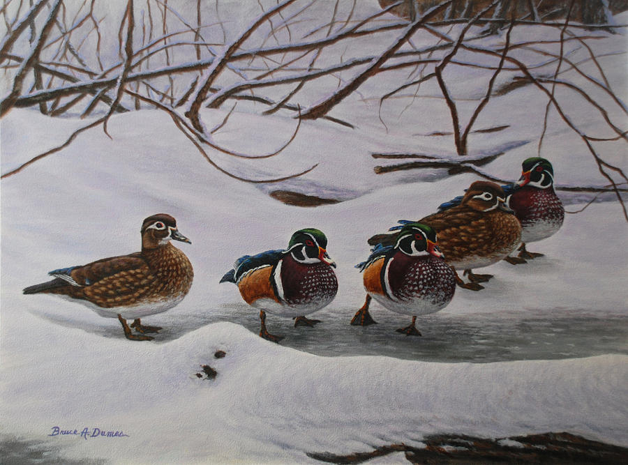https://images.fineartamerica.com/images/artworkimages/mediumlarge/1/winter-wood-ducks-bruce-dumas.jpg