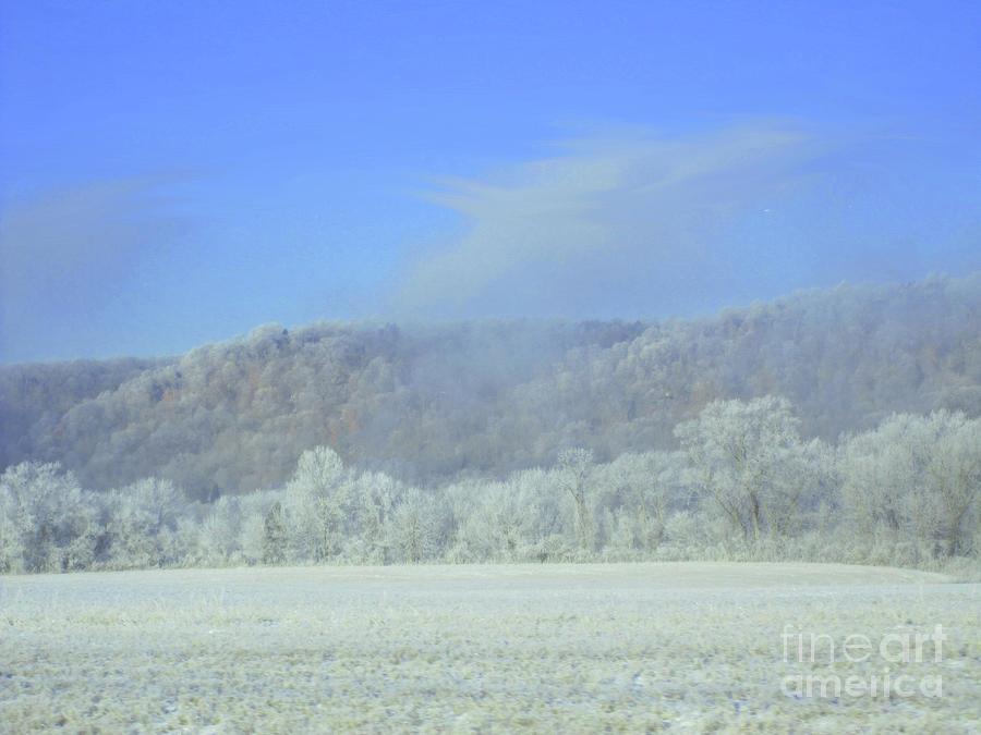 Winter's An Etching... by Melissa  Mim Rieman