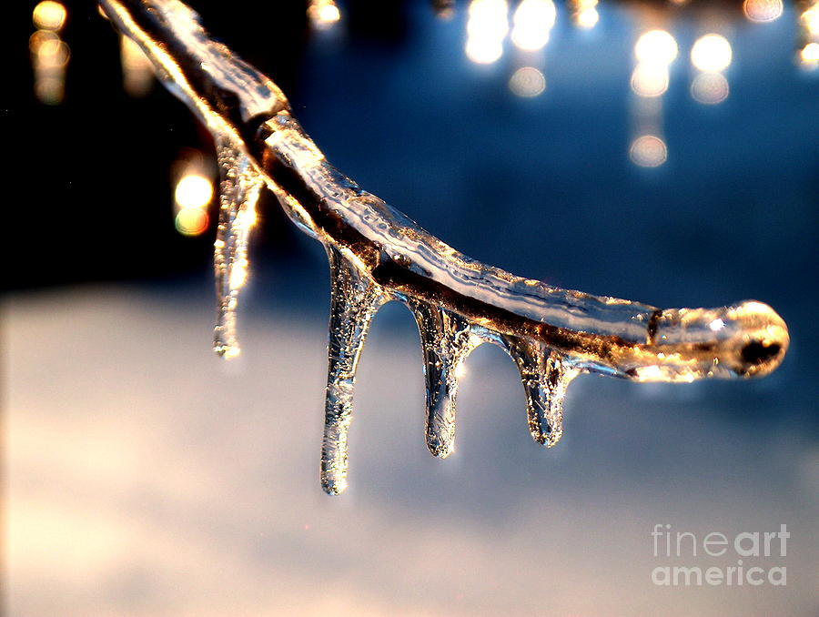 Ice Photograph - Winters Fine Crystal by Denise   Hoff