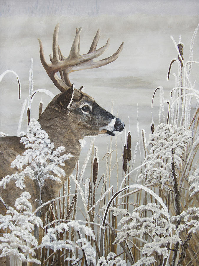 Winters Magical Moment - Whitetail Buck by Johanna Lerwick