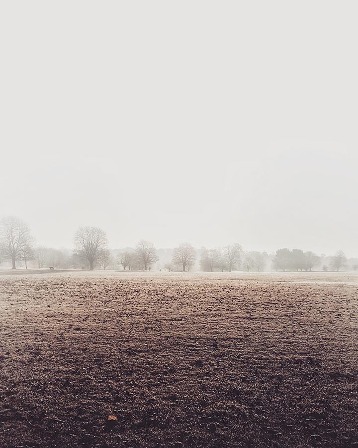 Landscape Photograph - Winters Morning At Motepark  by Stuart Ellesmere