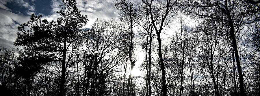 Winter's Mystic Horizon by Jason Denis