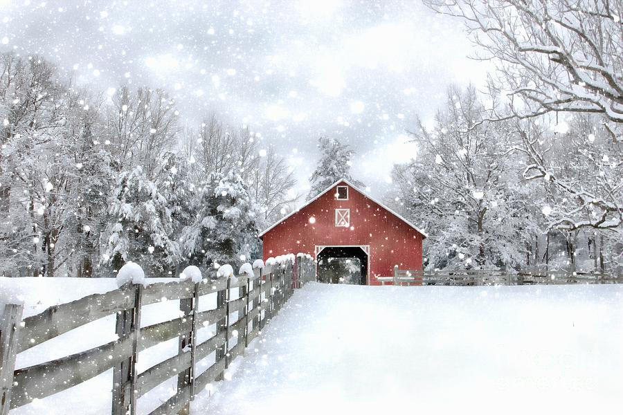 Winter's Red Barn by Benanne Stiens