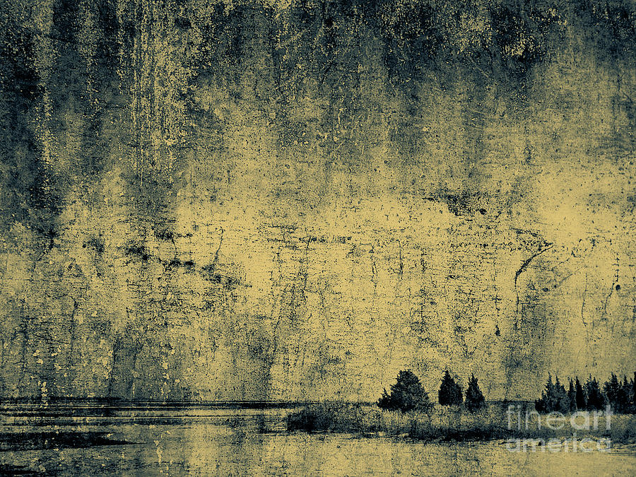 Texture Photograph - Winters Silence by Dana DiPasquale