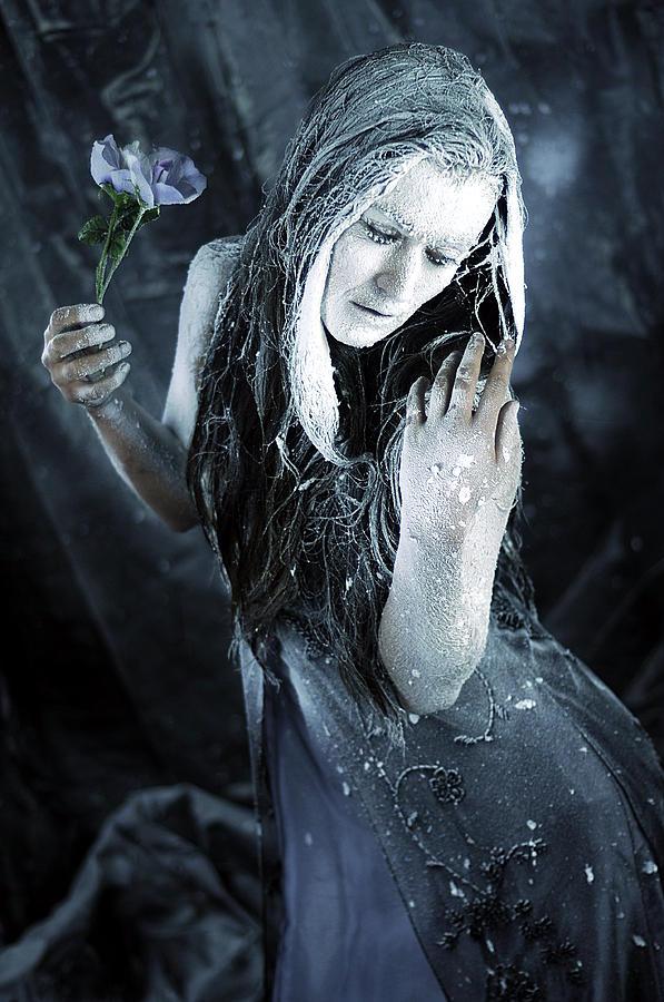 Winters Sorrow Photograph